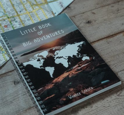 little book of